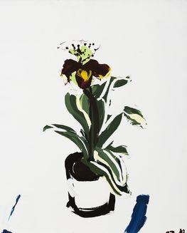 An Orchid by Daniela Orlev | Artfully Walls