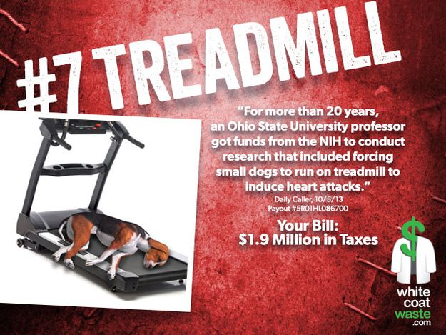 #7: The Treadmill | cost to taxpayers?  $893 each