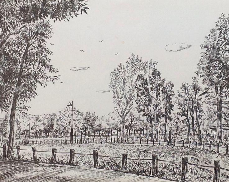 Artist - Itsuo Kiritani   Title - Mizumoto Park(水元公園 ) Dimensions - (24.5cm x 30.5cm)Year - 2007  Media - Pen and Ink on Paper   Inquiry