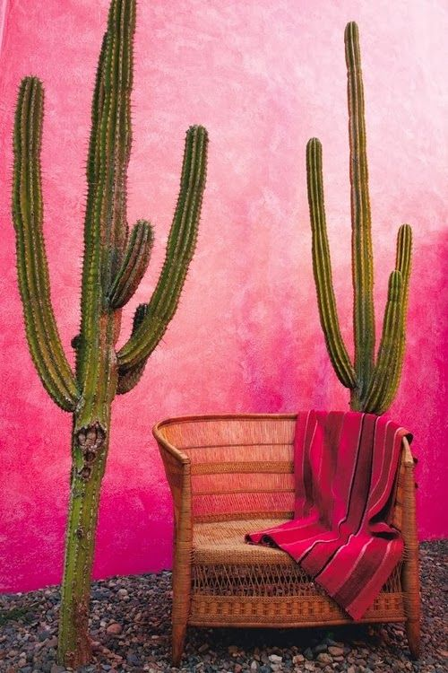 Let's hang out | Color your home | we love this amazing bright fuchia pink