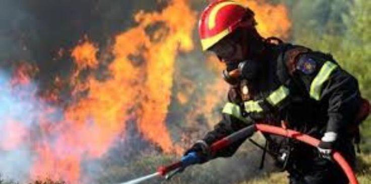 Σε εξέλιξη Φωτιά σε δασική έκταση στην Εύβοια