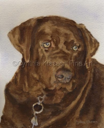 This watercolor painting was done as a commission of the Chocolate Lab, Chocolate Chunk. At over 90 lbs, that's a lot of chocolate! Commissions available via CynthiaKlassen.com