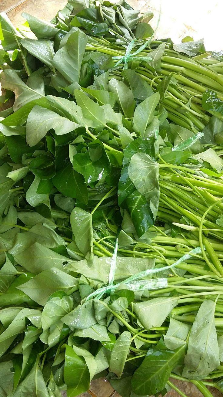 Leafy vegetables
