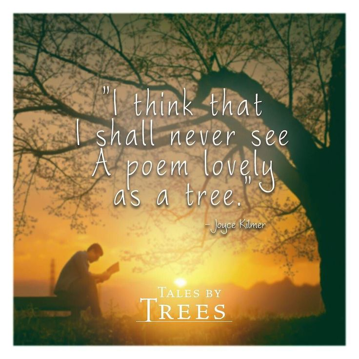 #quote #art #nature #talesbytrees