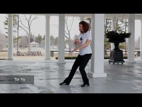 The 108 Tai Chi Moves DVD (as taught by Master Moy Lin Shin)