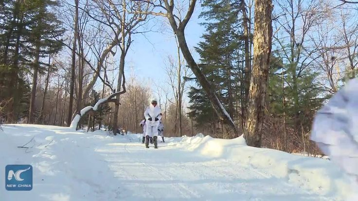 Police officers get on snowboard and snowmobile to patrol a nature reserve in northeast China's Jilin Province. It's not only cool, but also effective in protecting rare species in the forest.