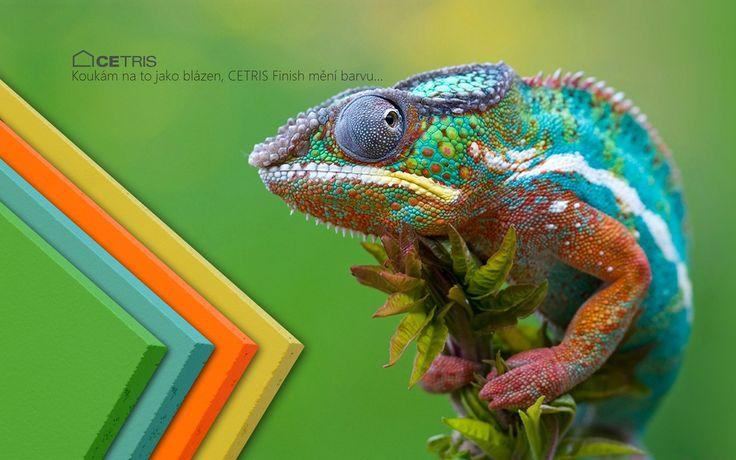 Koukám na to jako blázen, CETRIS Finish mění barvu...