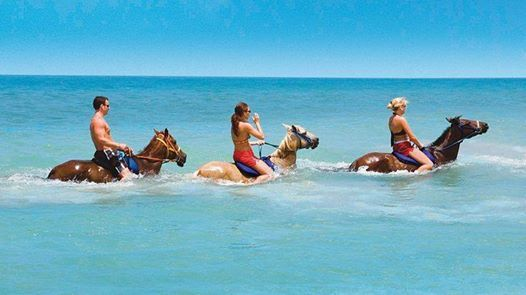 Have your very own Caribbean 'Sea-biscuit' moment as you ride the waves on horseback for a one-of-a-kind experience. #visitjamaica