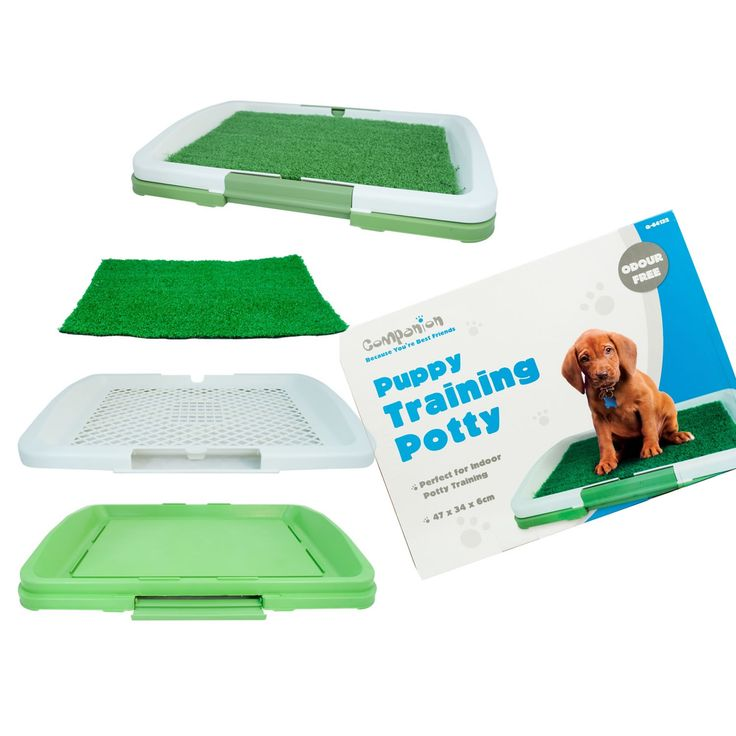PUPPY TRAINING PADS - 100 Pack   5 FREE!