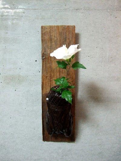 ikebana 茶花