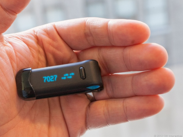fitbit - biometric device