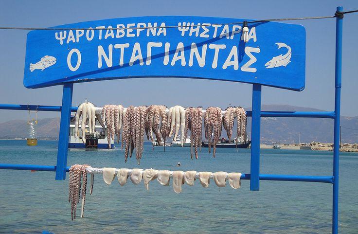 octopus in greek island taverna