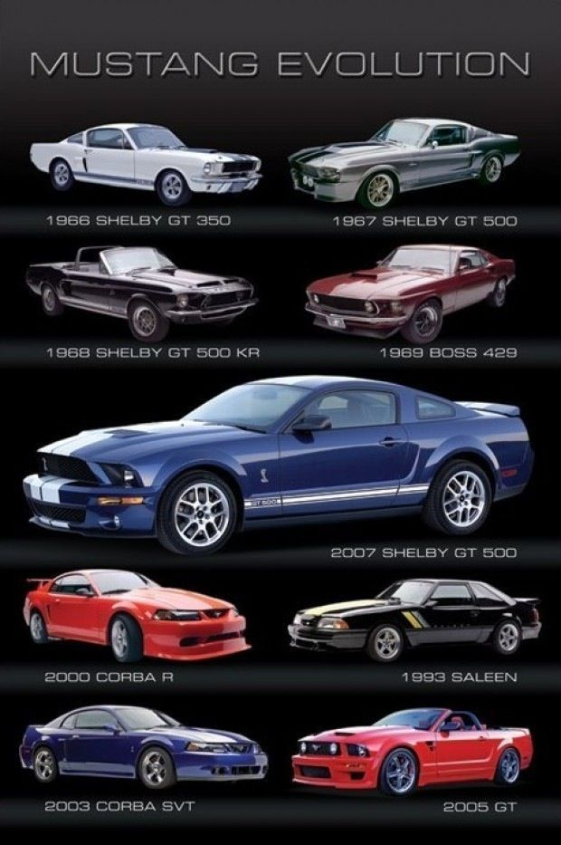 Ford Mustang Cobra 2005 Pin by Deshannon Phill...