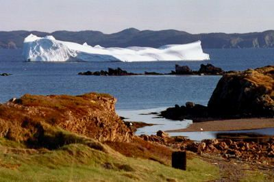Newfoundland is one of the best places in the world to view icebergs. Each year an average of 250 icebergs drift along in the cold waters of the Labrador Current onto the Grand Banks, a route known as Iceberg Alley.