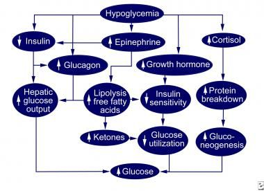 Neonatal hypoglycemia, defined as a plasma glucose level of less than 30 mg/dL (1.65 mmol/L) in the first 24 hours of life and less than 45 mg/dL (2.5 mmol/L) thereafter, is the most common metabolic problem in newborns.