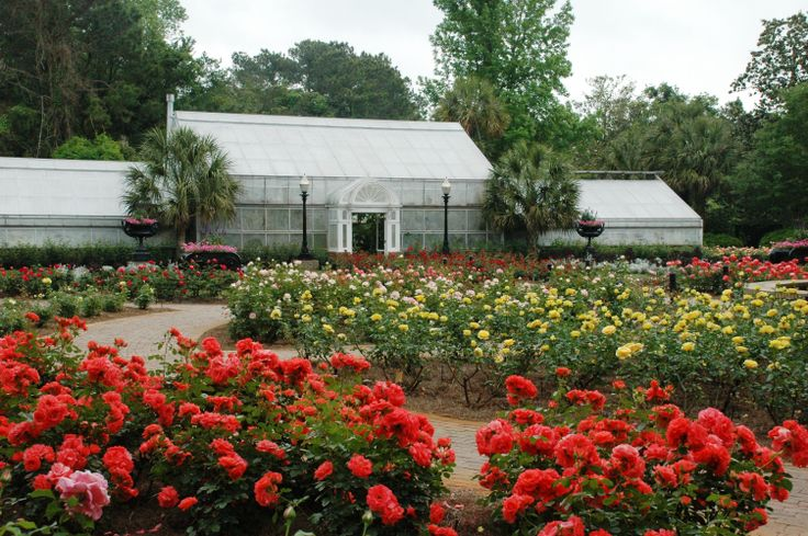 The #Bellingrath Rose Garden - April 2014