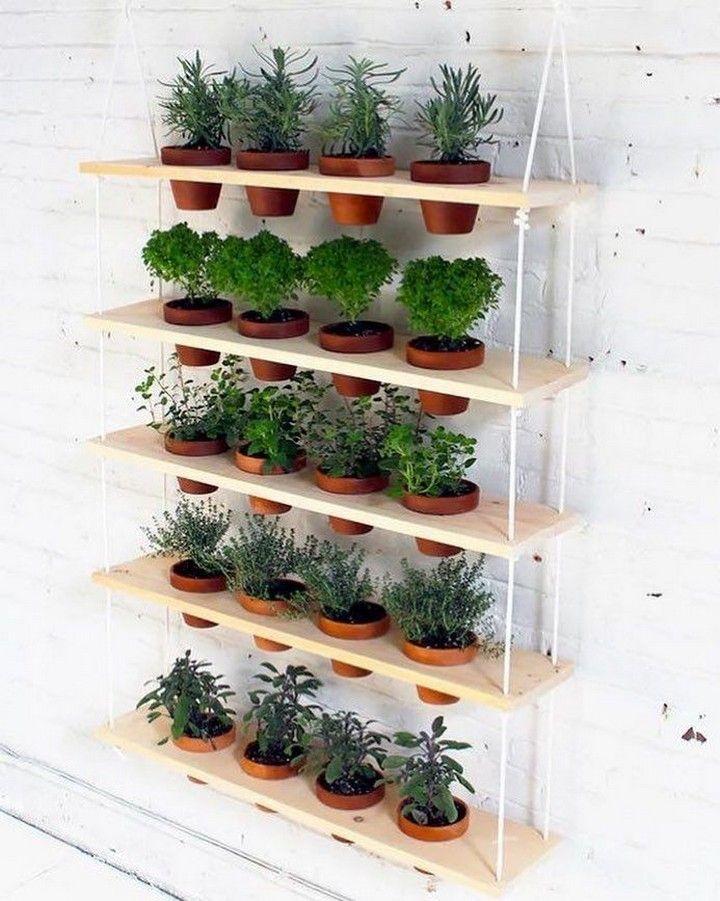 Easy Kitchen Herb Garden Ideas To Grow Culinary Herbs Decorholic