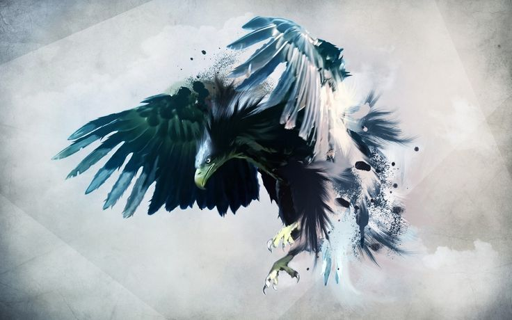 All types of eagle birds in the world with amazing facts. Bald eagles are symbol of American. They are at the top of the food chain, with some species feeding on big prey like monkeys and sloths.