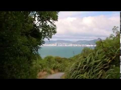 Matiu/Somes Island Scientific and Historic Reserve: Places to go in Wellington and Kapiti