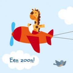 Hip en trendy drieluik geboortekaartje met vliegtuig met daarin een giraf. Achter het vliegtuig hangt een sleep met daarop gegevens van je kindje. Verder wolkjes en vogels.