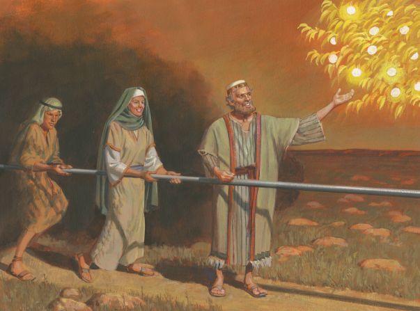 Wenn wir am Wort Gottes festhalten, bleiben wir auf dem schmalen Weg der zu Gott führt.