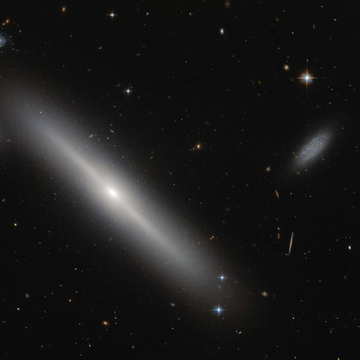 This NASA/ESA Hubble Space Telescope image shows star clusters encircling a galaxy, like bees buzzing around a hive. The hive in question is an edge-on lenticular galaxy NGC 5308, located just under 100 million light-years away in the constellation of Ursa Major (The Great Bear).