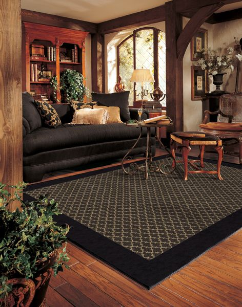 Traditional Living Room Rugs 249 best area rugs images on pinterest | area rugs, san diego and
