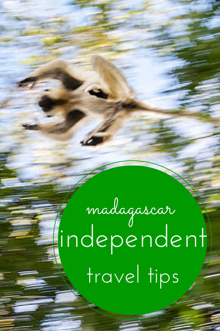 Tips to travel around Madagascar and its national parks independently
