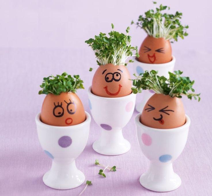 Malen Sie lustige Gesichter auf den Eiervasen mit Kresse