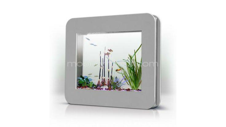 15 best hey mister dj images on pinterest album covers for Aquarium cadre