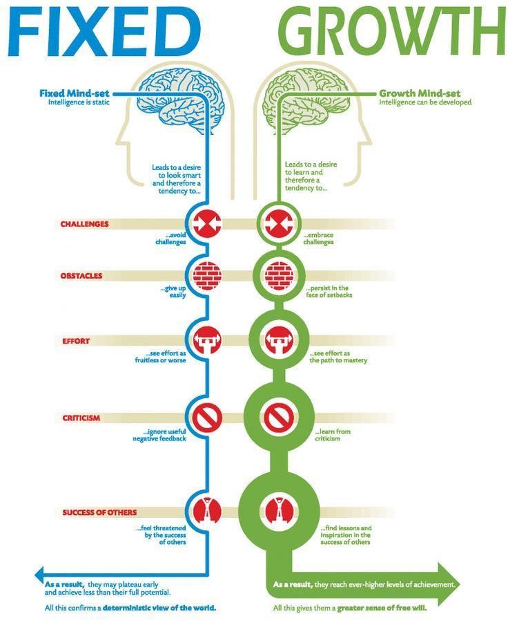 "A nice visualization of the mindsets from Carol Dweck's book ""Mindset"". http://www.coachingportal.com/"