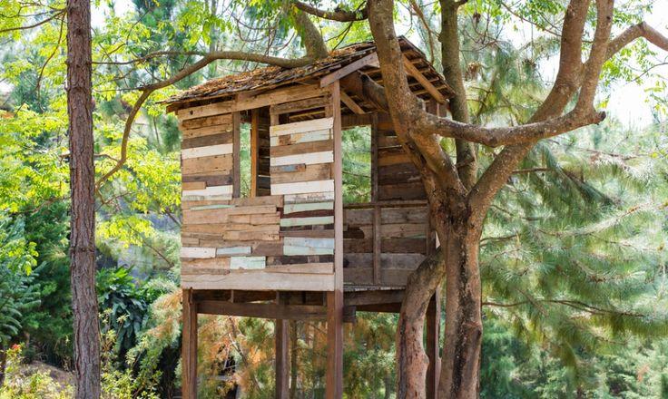 Une cabane dans les arbres