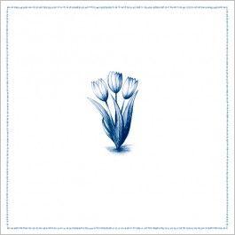 wenskaart - tulpen   de kaartenmakers