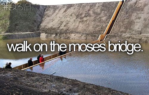 The Moses Bridge, somewhere here in the Netherlands. The article doesn't say