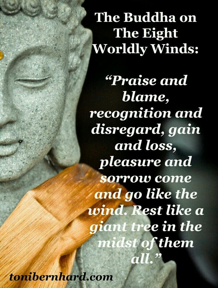 Praise and Blame, Fame and Shame, Loss and Gain, Pleasure and Pain... The Eight Worldly Concerns, Buddhism.