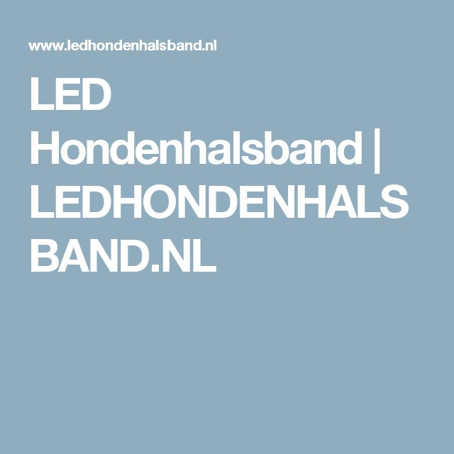 LED Hondenhalsband | LEDHONDENHALSBAND.NL