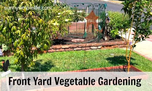 509 best images about the blog on for Front yard vegetable garden designs