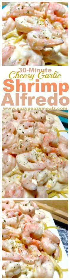 30 minutes for this cheesy garlic alfredo packed with shrimp and flavor! Perfect for a busy weeknight meal. Yum! - Eazy Peazy Mealz