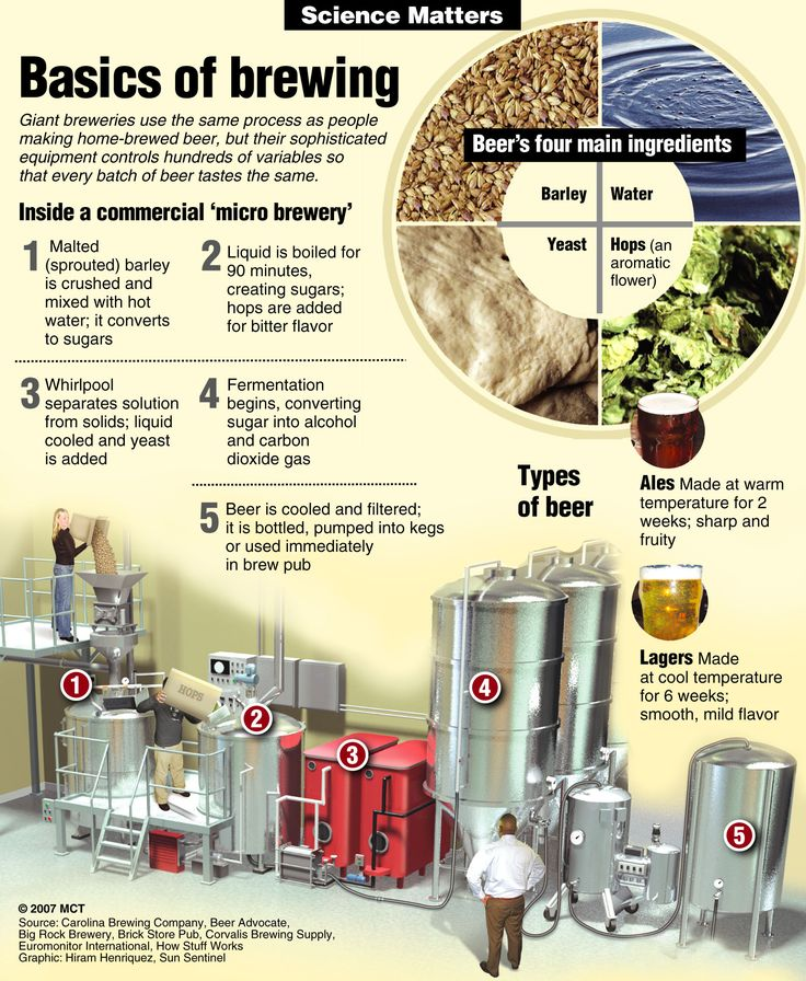 SCIENCE MATTERS: Basics of brewing
