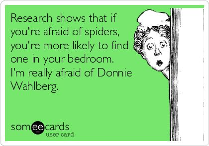 Research shows that if youre afraid of spiders, youre more likely to find one in your bedroom. Im really afraid of Donnie Wahlberg.