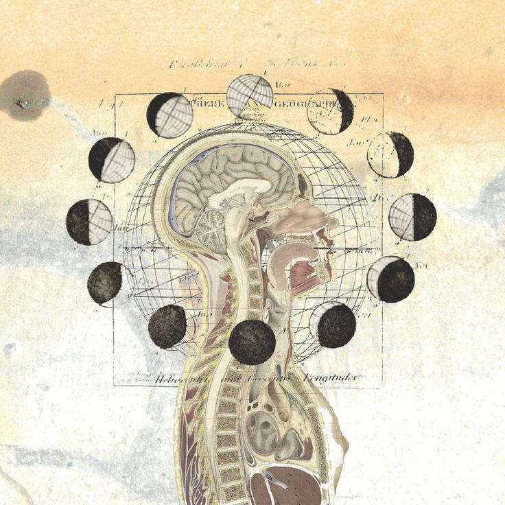 20 best 0-RA symmetrical for blueprint images on Pinterest - copy blueprint medicines analyst coverage