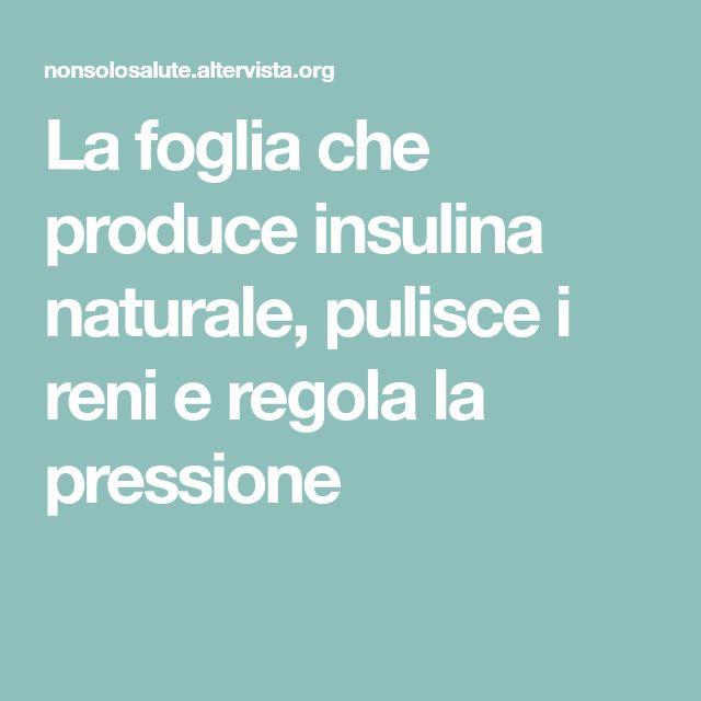 La foglia che produce insulina naturale, pulisce i reni e regola la pressione
