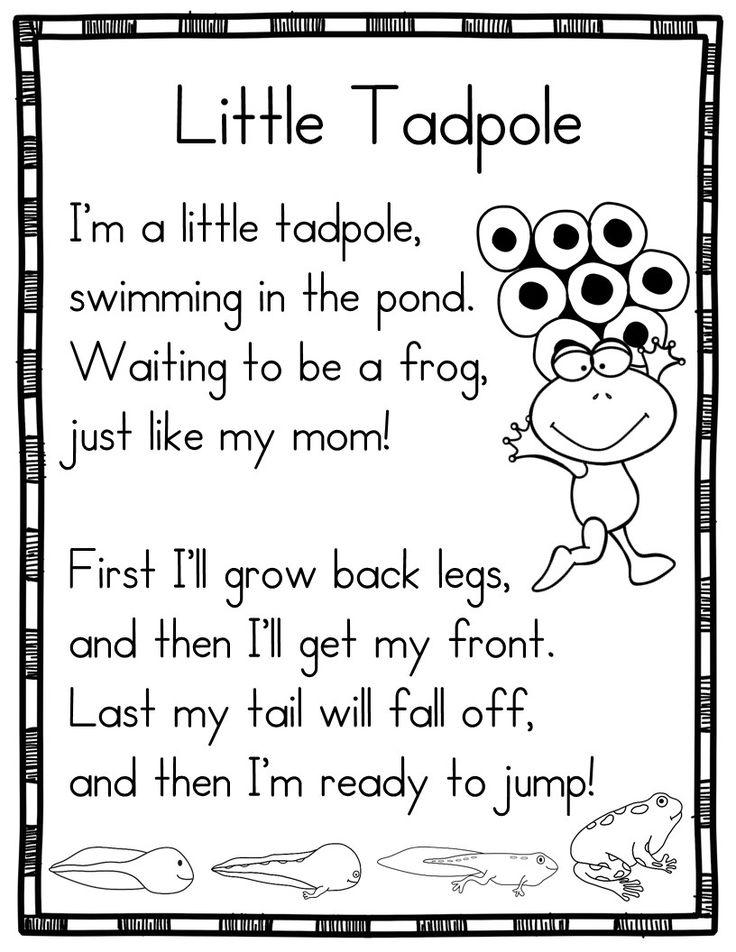 15 Spring Poems for Shared Reading-Life Cycle of a Frog