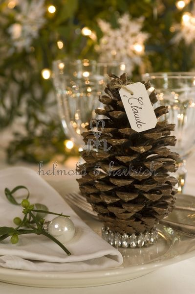 Christmas pine cone place setting....