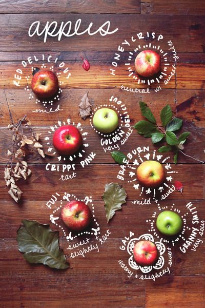 The different types of apples