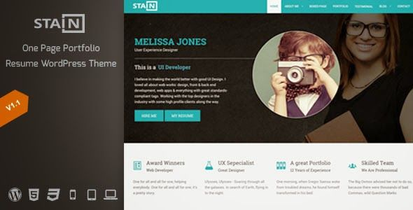 Stain  One Page Portfolio Resume WordPress Theme  Blogger Template