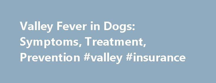Valley Fever in Dogs: Symptoms, Treatment, Prevention #valley #insurance http://arizona.nef2.com/valley-fever-in-dogs-symptoms-treatment-prevention-valley-insurance/  # Valley Fever in Dogs It was a cough. After a few days of dry coughing I took my dog to the veterinarian. Thankfully, lab tests and x-rays (about $320) showed that the cough was not Valley Fever. After a few weeks of antibiotics her cough, and the infection that caused it cleared up. For many dog owners in the Phoenix area…