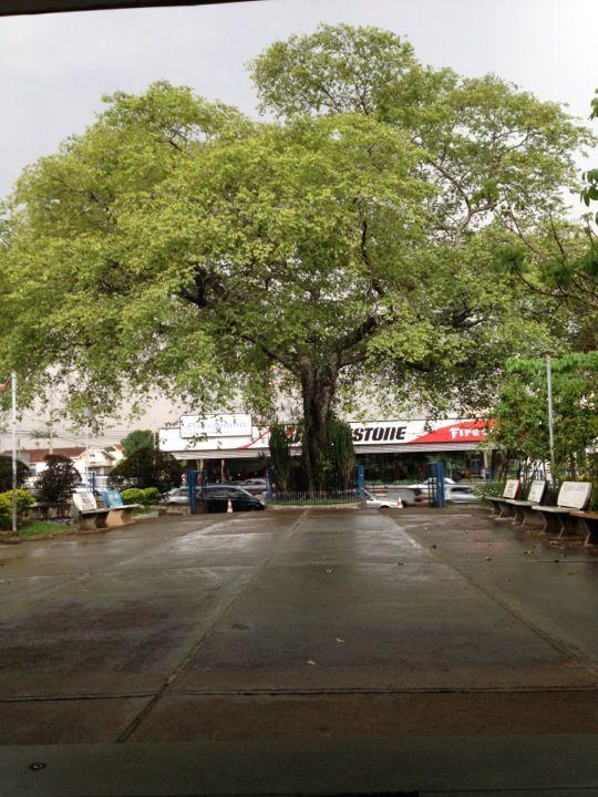 Secretaria Estadual da Educação de Goiás  Bom dia!!   #timBETA #rt #betaseguebeta #betaajudabeta #missaobetalab #sdv