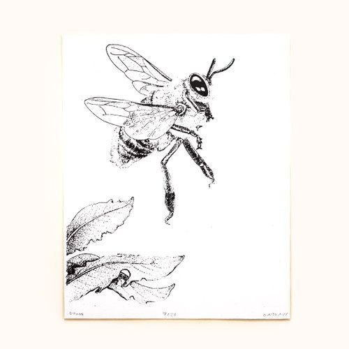 Drone Bee serigraph print