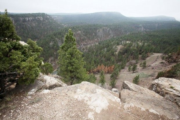 The uniquely beautiful Black Hills of South Dakota, setting for most of IN A RENEGADE'S EMBRACE.